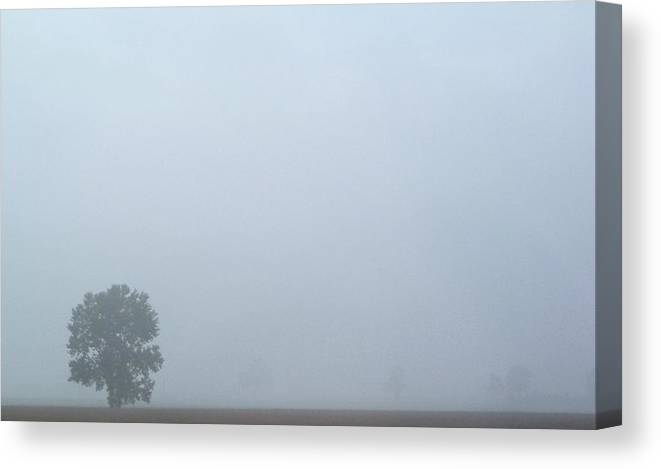 Landscape Canvas Print featuring the photograph Tree In Mist by Katie Beougher