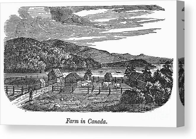 1820 Canvas Print featuring the photograph Canada: Farm, C1820 by Granger