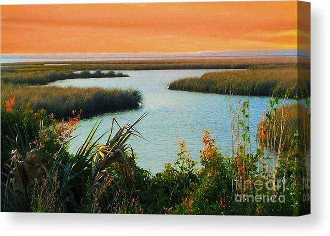 St. Marks Canvas Print featuring the photograph Dreamsicle Sunset by Julie Dant