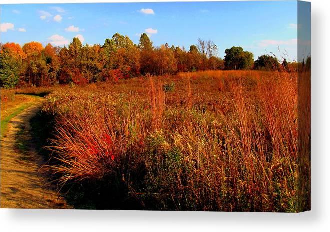 Autumn Canvas Print featuring the painting Autumns Field by Scott Heaton
