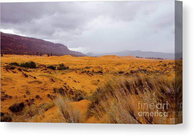 Paria Canvas Print featuring the photograph Burnt Earth by Jerry Sellers