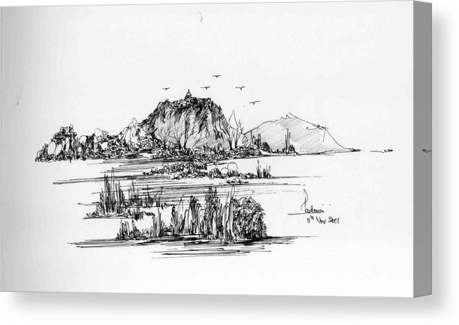 Hills Canvas Print featuring the drawing Hills Grass And Some Birds by Padamvir Singh