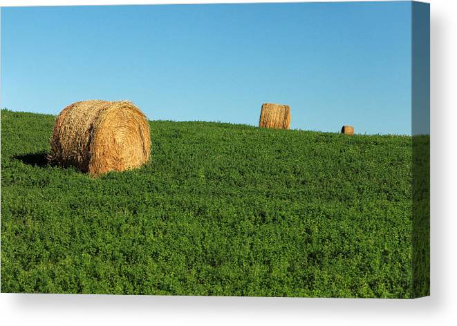 Bales Canvas Print featuring the photograph Three Old Bales by Todd Klassy