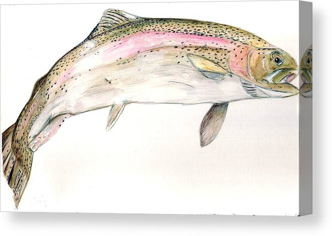 Trout Canvas Print featuring the painting Trout by Debra Sandstrom