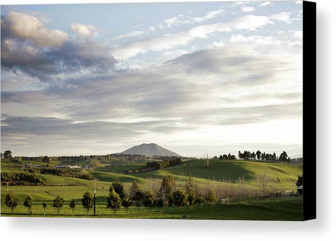 Agricultural Canvas Print featuring the photograph New Zealand by Les Cunliffe
