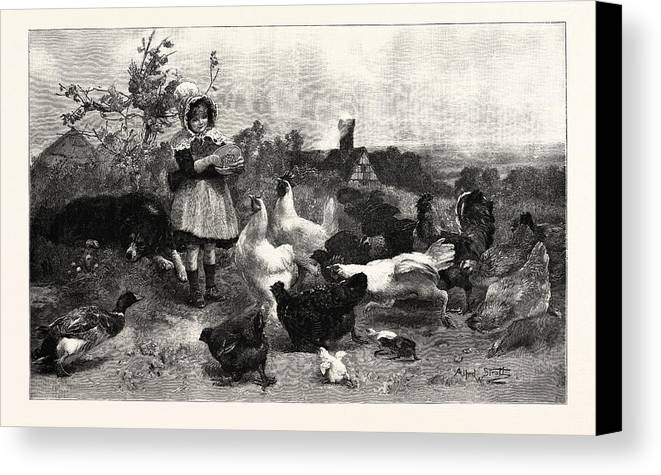 Morning Canvas Print featuring the drawing A Morning Call by English School