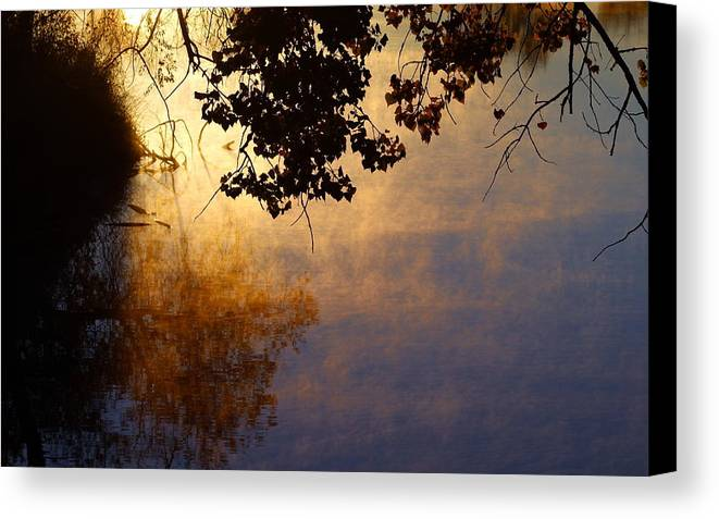 Sunrise Canvas Print featuring the photograph Branches Misty Pond Sunrise by Mark Wagner