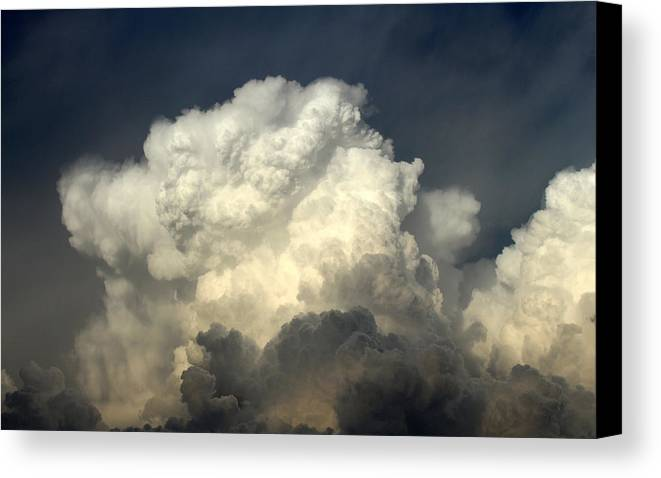 Clouds Canvas Print featuring the photograph Marshmellow by Kelly Lange