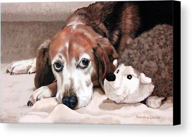 Dog Canvas Print featuring the painting Zeppy And Lovey by Sandra Chase
