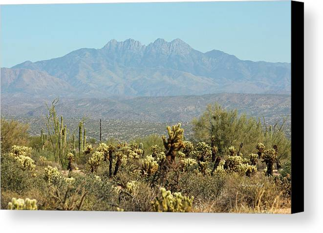 Arizona Canvas Print featuring the photograph Arizona Scenic V by Suzanne Gaff