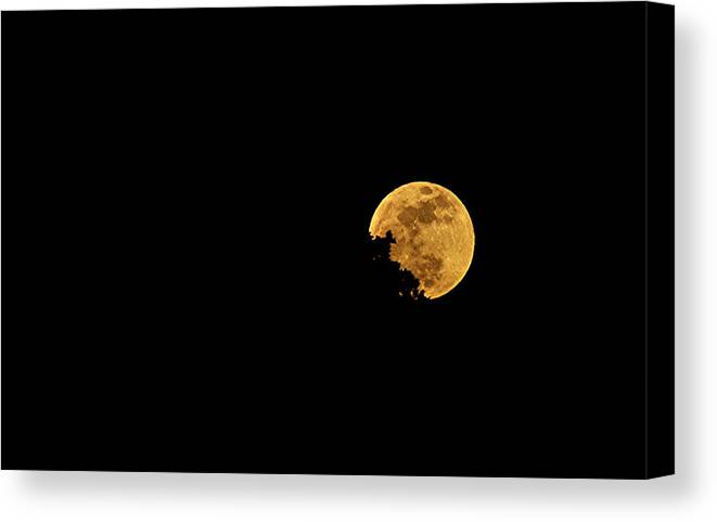 Moon Canvas Print featuring the photograph Supermoon 2012 by James Stodola