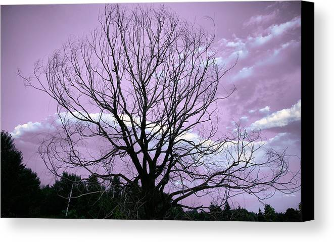 Landscape Canvas Print featuring the photograph Aglow by Ryan McIntyre