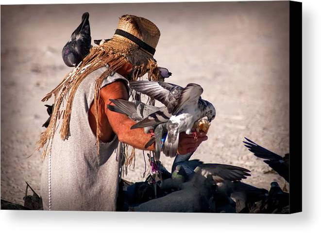Birds Canvas Print featuring the photograph Bird Man by Jennifer Stackpole