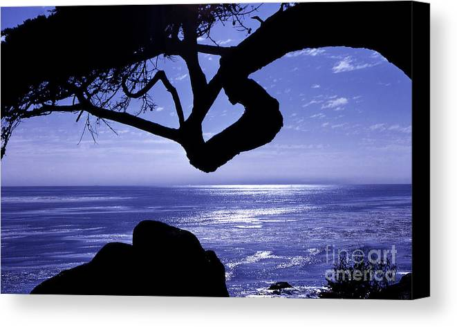 Ocean Canvas Print featuring the photograph Blue Ocean by Timothy Johnson