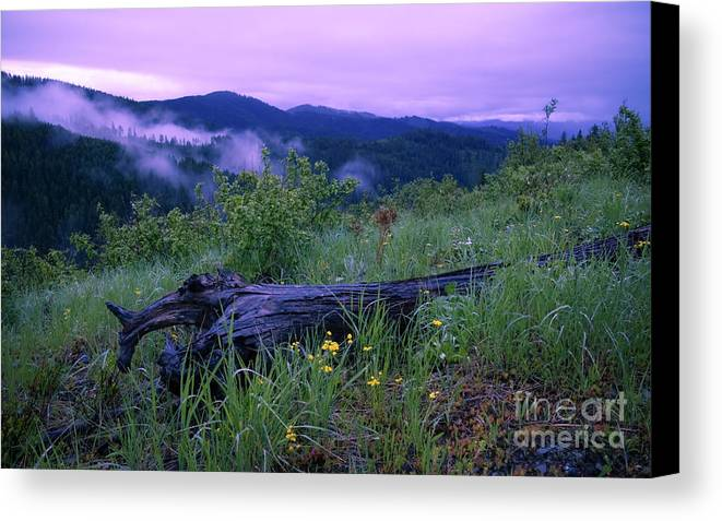 Mountains Canvas Print featuring the photograph Coeur D'alene Mountains by Idaho Scenic Images Linda Lantzy