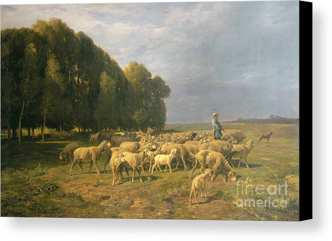 Flock Canvas Print featuring the painting Flock Of Sheep In A Landscape by Charles Emile Jacque