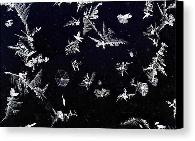 Beautiful Photos Canvas Print featuring the photograph Frost On Car Window 1 by Roger Snyder