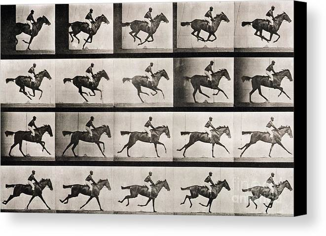 Muybridge Canvas Print Featuring The Photograph Jockey On A Galloping Horse By Eadweard