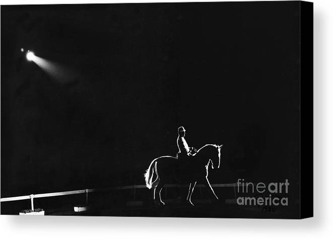 Horse Canvas Print featuring the photograph Show Horse by Jim Wright