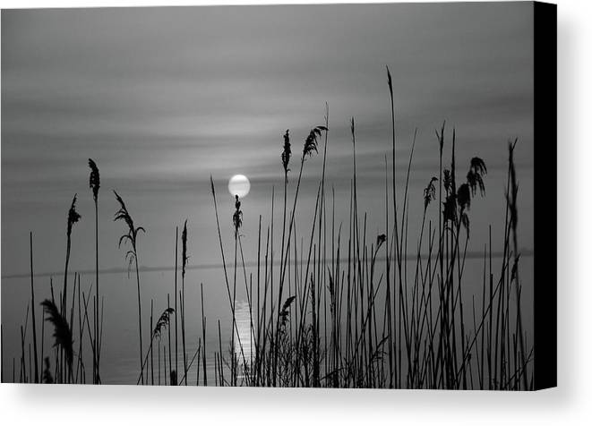 Canvas Print featuring the photograph Sunrise Black And White by Dara Buckley