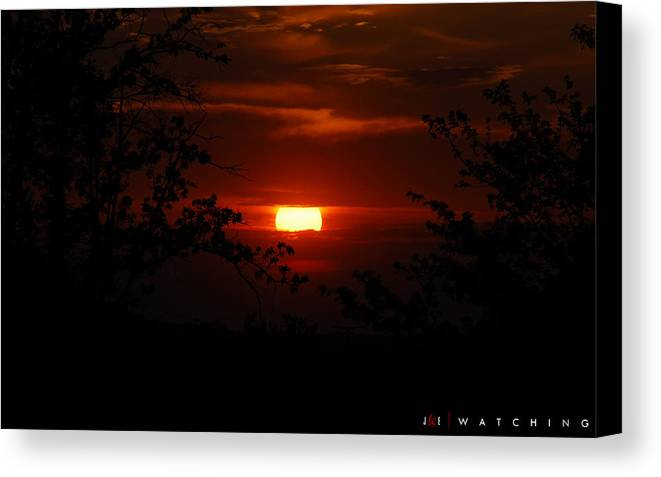 Landscape Canvas Print featuring the photograph Watching by Jonathan Ellis Keys