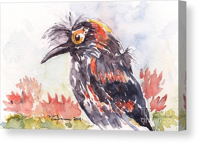 Hawaiian Bird Canvas Print featuring the painting Akohekohe - Hawaiian Crested Honeycreeper by Claudia Hafner