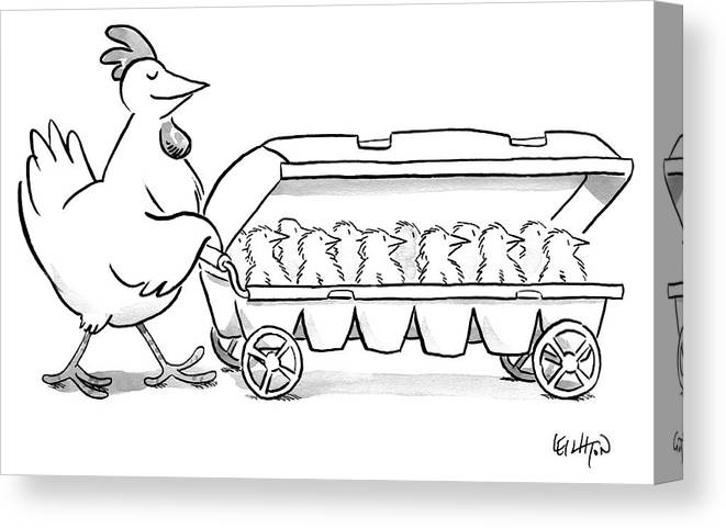 Hen Canvas Print featuring the drawing Carton Of Chicks by Robert Leighton
