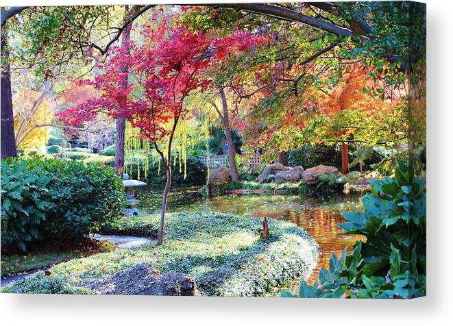 Landscape Canvas Print featuring the photograph Enlightenment by Michelle Dukes