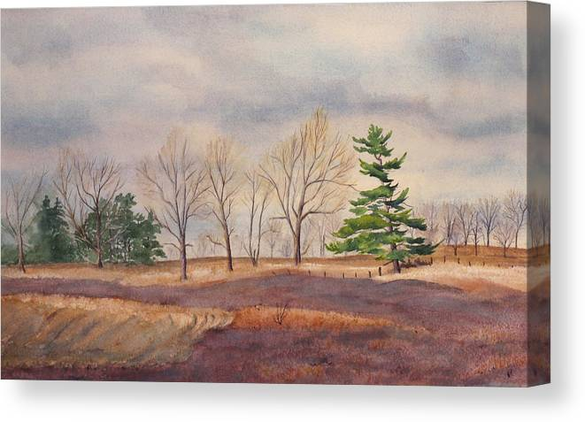 Shadows Canvas Print featuring the painting Fall Tapestry by Debbie Homewood
