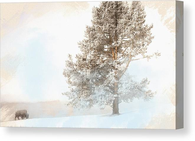 Decoration Canvas Print featuring the digital art Montana by Don Kuing