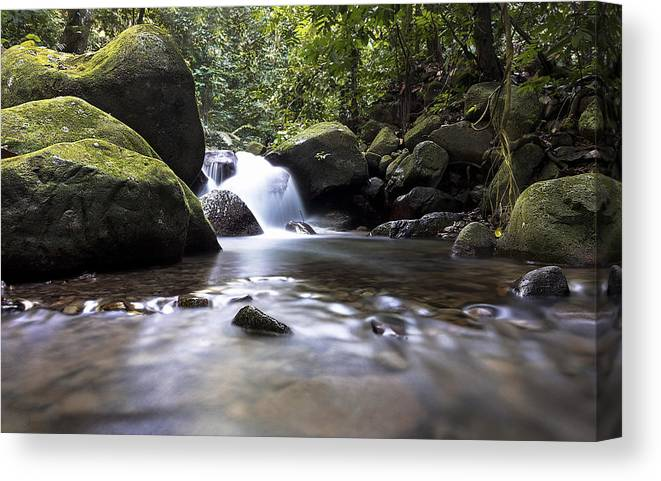 Mountain River Canvas Print featuring the photograph Mountain River Stream by Raymond Philip