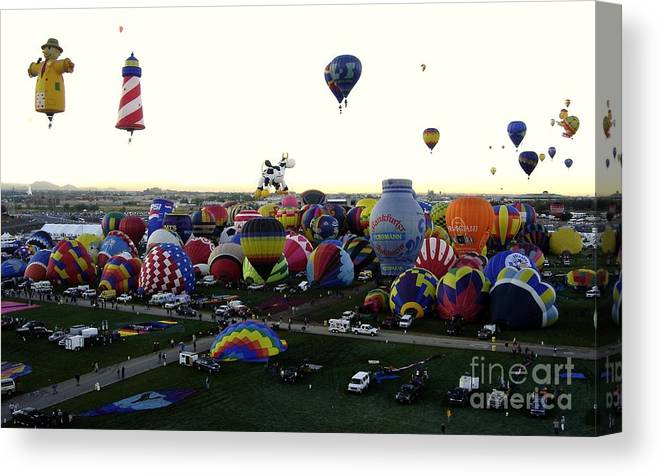 Hot Air Balloons Canvas Print featuring the photograph Special Shapes by Mary Rogers