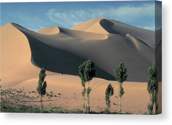 Giant Canvas Print featuring the photograph Mountains Of Singing Sand by Carl Purcell