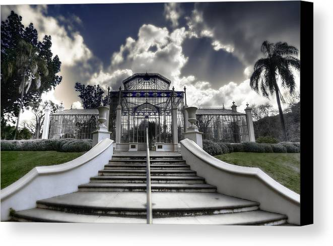 Palms Canvas Print featuring the photograph Palm House by Wayne Sherriff