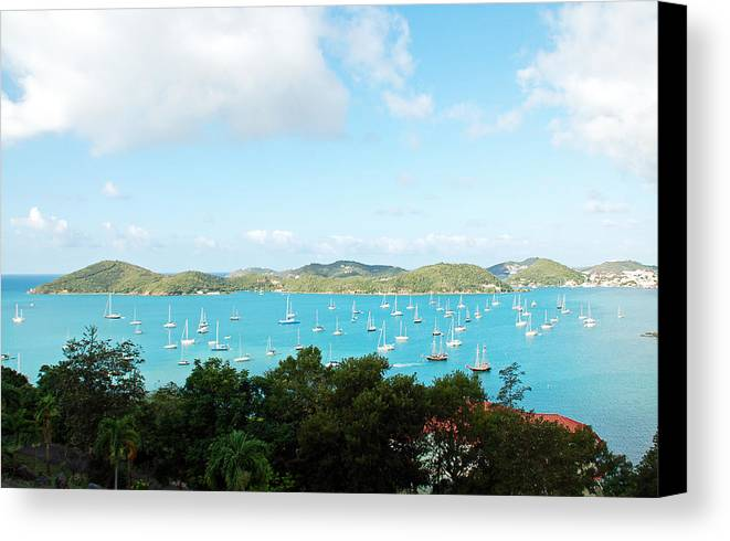 St Thomas Canvas Print featuring the photograph Sea Of Sailboats by Aimee L Maher ALM GALLERY