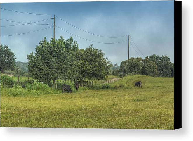 Florida Canvas Print featuring the photograph Along A Rural Road by Jane Luxton