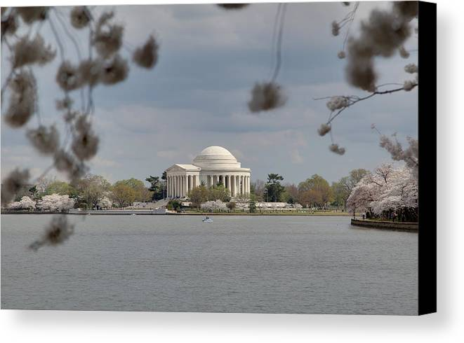 America Canvas Print featuring the photograph Cherry Blossoms With Jefferson Memorial - Washington Dc - 011318 by DC Photographer