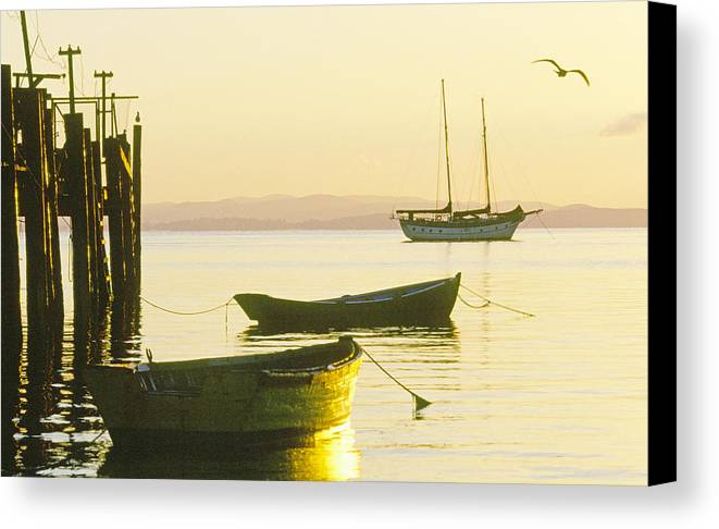 Marin County Canvas Print featuring the photograph China Camp 2 by Gary Hromada
