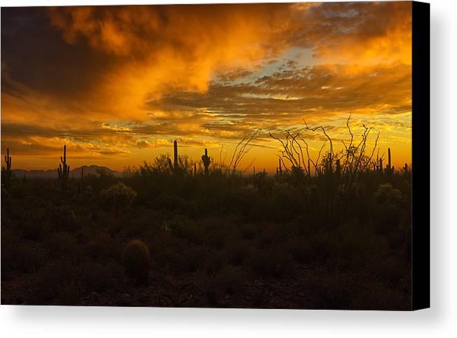 Sunset Canvas Print featuring the photograph Desert Southwest Skies by Saija Lehtonen