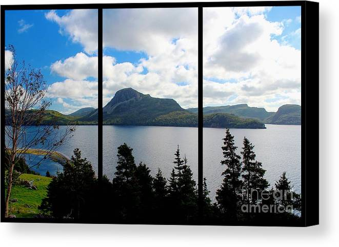 Pastoral Scene By The Ocean Triptych Canvas Print featuring the photograph Pastoral Scene By The Ocean Triptych by Barbara Griffin