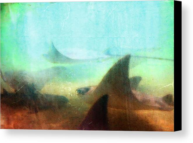 Ray Canvas Print featuring the painting Sea Spirits - Manta Ray Art By Sharon Cummings by Sharon Cummings