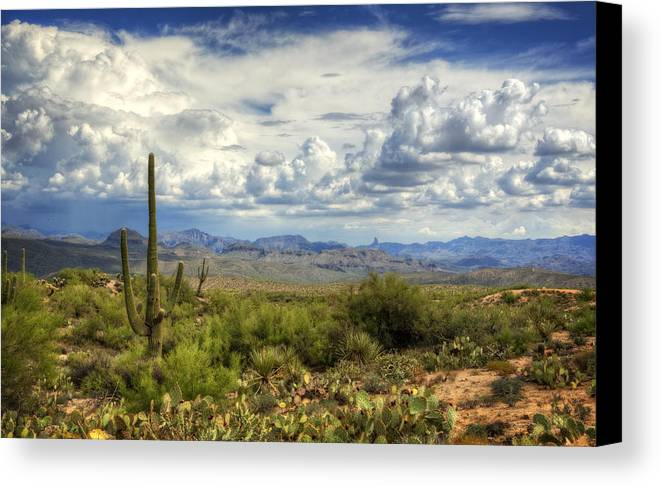 Arizona Canvas Print featuring the photograph Visions Of Arizona by Saija Lehtonen