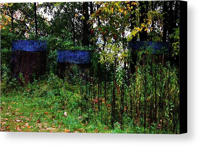 Nature Canvas Print featuring the photograph A Touch Of Blue by Tina Bryson