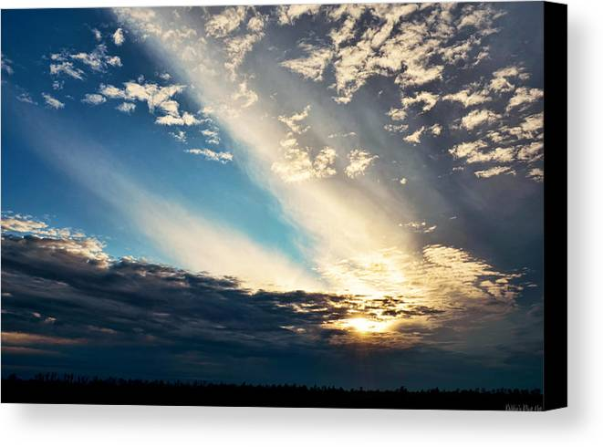 Nature Canvas Print featuring the photograph Evening Rays by Debbie Portwood