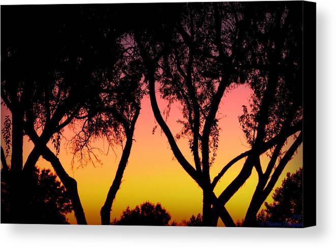 Silhouette Canvas Print featuring the photograph Silhouette Of Autumn by Aaron Burrows
