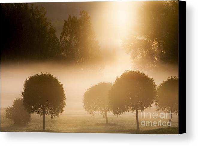 Morning Canvas Print featuring the photograph Morning At Golf Course by Lasse Ansaharju