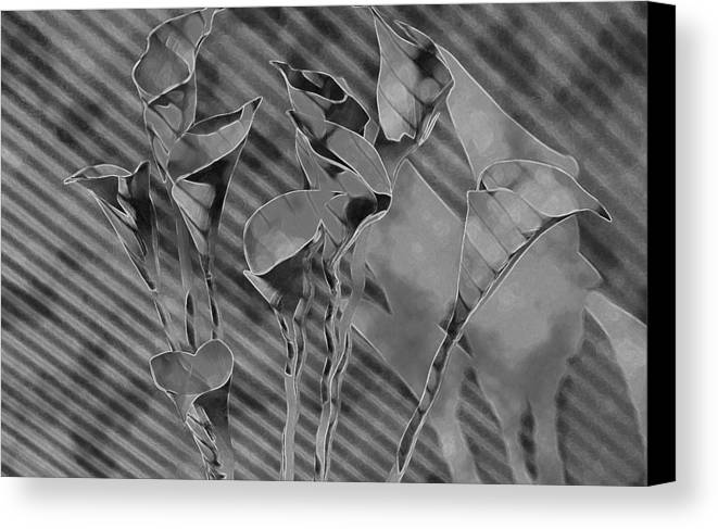 Flowers Canvas Print featuring the painting Calla Lilies by Gary at TopPhotosI