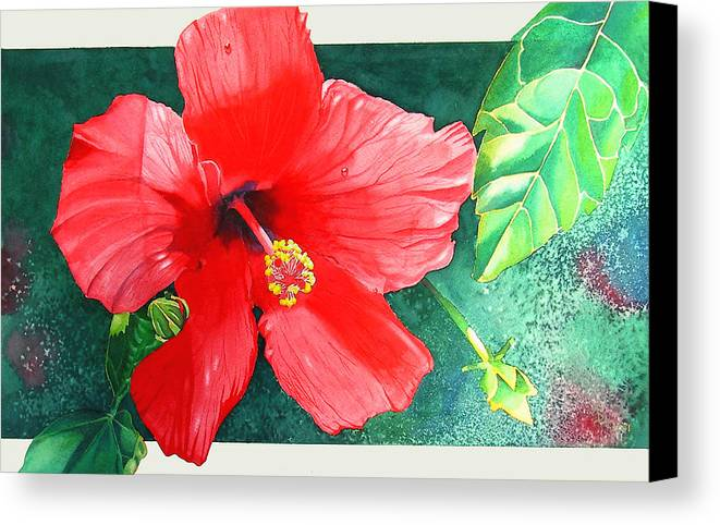 Flowers Canvas Print featuring the painting Amapola by Ada Astacio