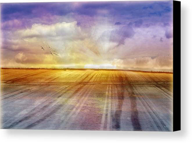 Landscapes Canvas Print featuring the photograph Choices by Holly Kempe