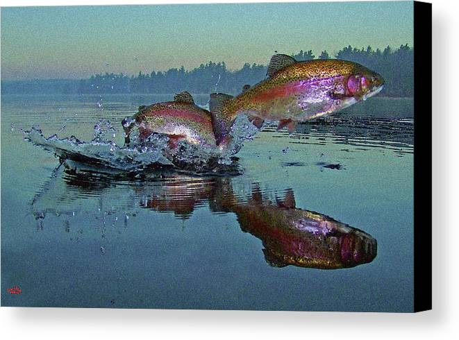 Rainbow Trout Canvas Print featuring the photograph Dance Of The Trout by Brian Pelkey